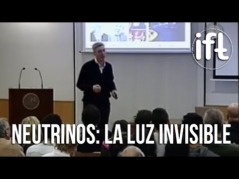 Neutrinos: la Luz Invisible - Michele Maltoni