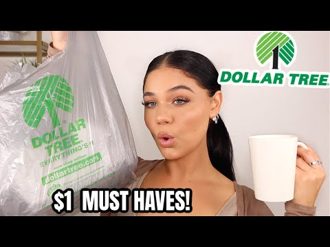 DOLLAR TREE HAUL! $1 Hidden Gems😍 | Blissfulbrii