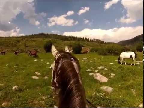 A summer ride at a Colorado dude ranch