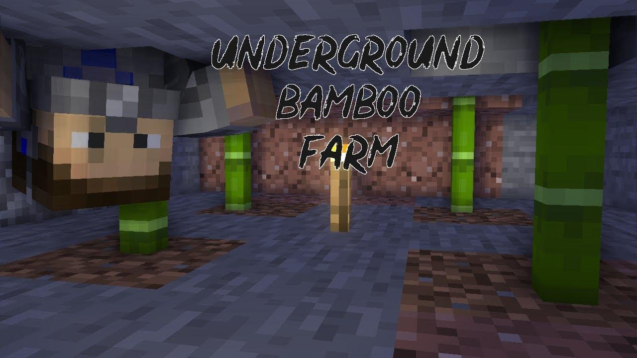 Secret Underground Bamboo Farm  Minecraft One Block Tall