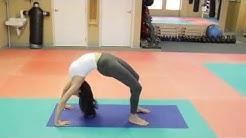 Yoga Studio In St.  Pete - www.MasterMehrdad.com