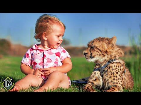 10 Strani e inusuali animali domestici che hanno alcuni bambini nel mondo