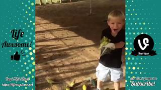 Funny Kids Fails: ) Funny Kids and Animals Compilation