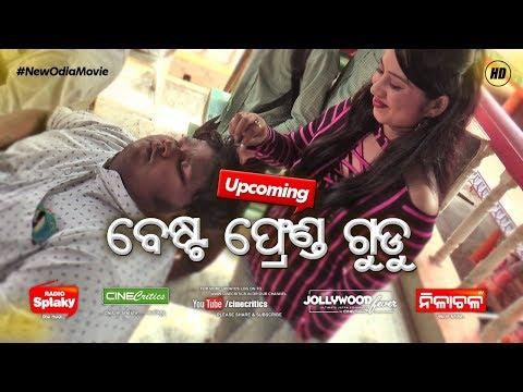 Best Friend GUDDU - Selfish Dil Odia Movie - Shreyan, Suryamayee - New Odia Film - CineCritics