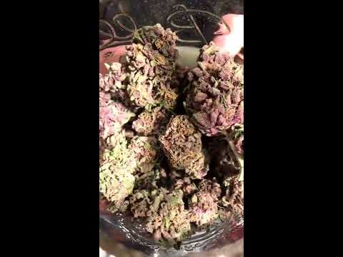 Ultra Health Bird Land Medical Marijuana Dispensary Albuquerque, NM Tour