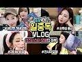 [온미] 일중독?! 열일하는 인스타스타 모델 옐롱이의 하루 VLOG