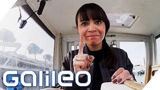 Shared Travels - Wie gut sind geteilte Reisen? | Galileo | ProSieben