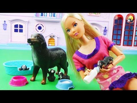 Кукла Штеффи и ее беременная собака. «Рождение щенков» Игровой набор / Doll, pregnant dogs, puppies
