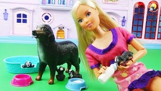 Кукла Штеффи и ее верная собака с щенками Игровой набор / Doll, dogs, puppies
