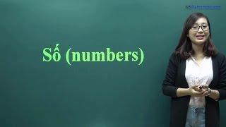 #8 Học số đếm trong tiếng Việt (0 - 99)