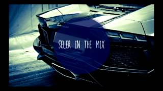 SELER IN THE MIX - WE LOVE HARDCORE !!!