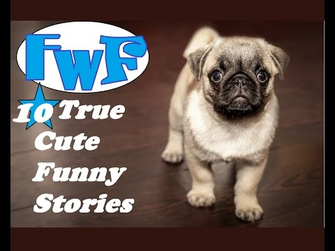10 True and Cute Funny Stories