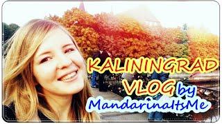 КАЛИНИНГРАД ВЛОГ(Небольшое видео о моем уикенде в Калининграде) Надеюсь, вам оно понравится!, 2015-11-15T15:58:50.000Z)