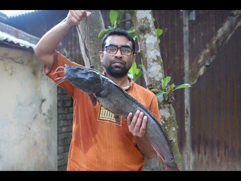 Cooking And Recipes | Catfish Curry | Grandmother Recipes-25