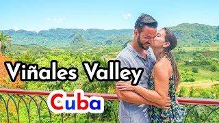 Viñales Cuba 4K