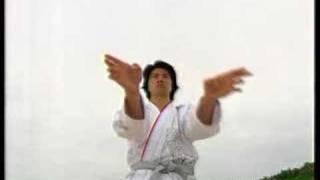 Martial arts, Okinawa Karate