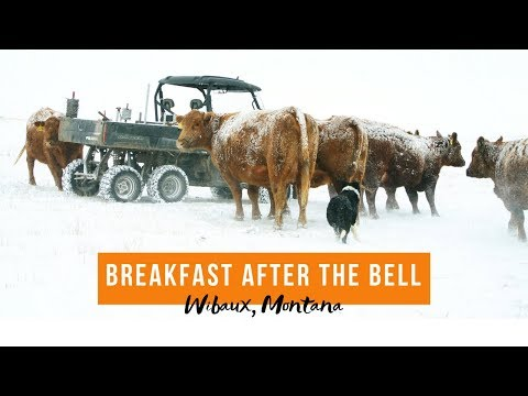 Breakfast After the Bell - Wibaux High School, MT