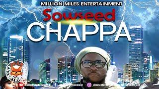 Sowseed - Chappa [My Place Riddim] Audio Visualizer
