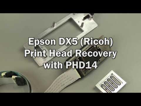Epson DX5 (Ricoh) Print Head Recovery on a PHD14
