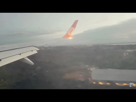 [TRIPREPORT] GOL Airlines B737-8EH [Martinique-Manaus-GRU Airport(São Paulo]