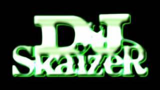 DJ Skaizer - Funeral Ceremony Riddim Mix 2k9