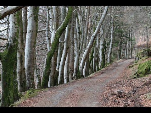 Day 4 Scottish Road Trip: Oban to Tobermory, Mull 21/03/16