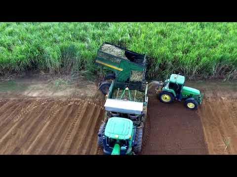 Drone Farming Australia-Sugarcane planting!