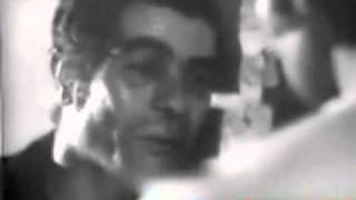 Gavaznha - Koocheh Melli Reza Yazdani گوزنها رضا یزدانی