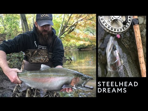 STEELHEAD DREAMS - Great Lakes Tributary Fishing 2018