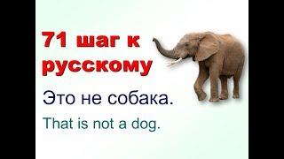 71 шаг к русскому языку 11 урок. Это не взрослый человек, а ребёнок.