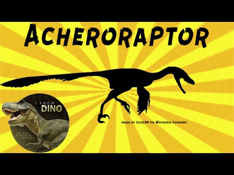 Acheroraptor: Dinosaur of the Day