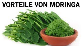 Das sind die überraschende Vorteile von Moringa für die Gesundheit!