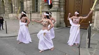 Action des Femen devant le Sénat contre la réforme de la justice (12 février 2019, Paris)