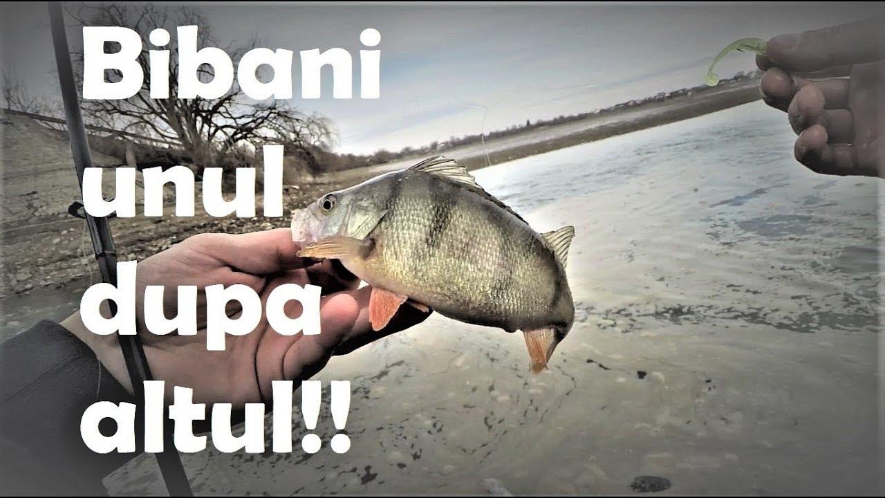 Pescuit la Biban 2019 - prima bibaneala la dropshot!