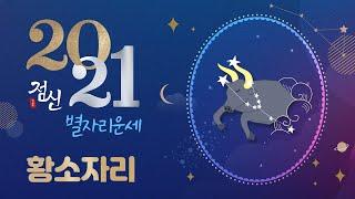 [별자리별 신년운세] 2021년 황소자리 운세- BEST 재물운 최상! 새로운 인연운 상승 두마리 토끼 다 …