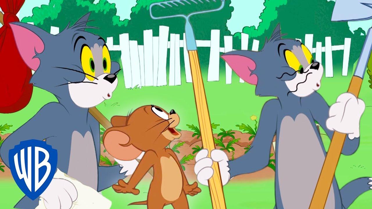 Tom & Jerry | Tom Goes Home | WB Kids