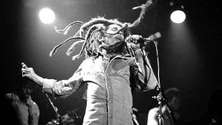 Bob Marley - Could You Be Loved ( Live Forever 2011).