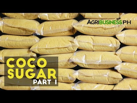 Coco Sugar Part 1 : High Value Product Coco Sugar | Agribusiness Philippines