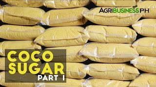 Coco Sugar - high value product from coconut sap. Agribusiness Season 3 Episode 2 Part 1