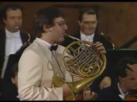 Mozart - Concerto Nº 3 Horn in E Flat Major [1/2]