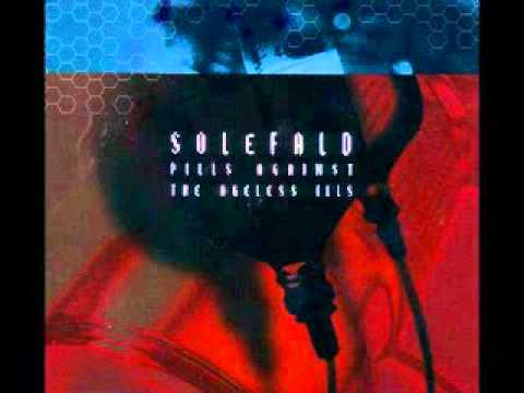 Solefald - Charge of Total Affect