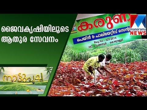 Social service through organic farming | Nattupacha  | Manorama News