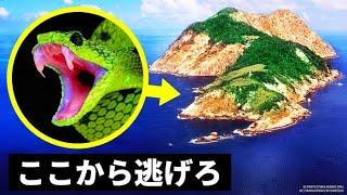 人々が訪れるのを恐れる島・・・その理由とは?