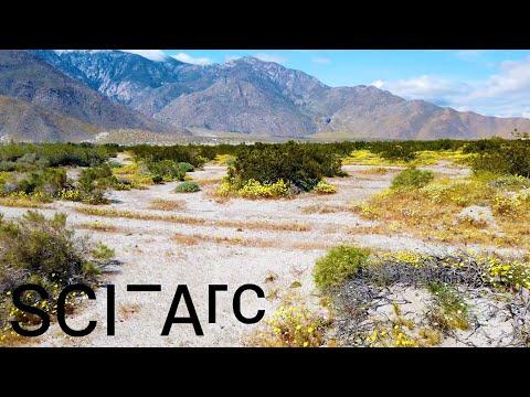 Coachella Valley: An Arid Symphony