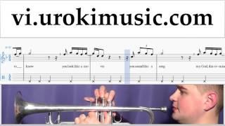 Tự Học Kèn Trumpet Adele - When We Were Young Hướng Dẫn  Bài Hát Phần 2 um-i687