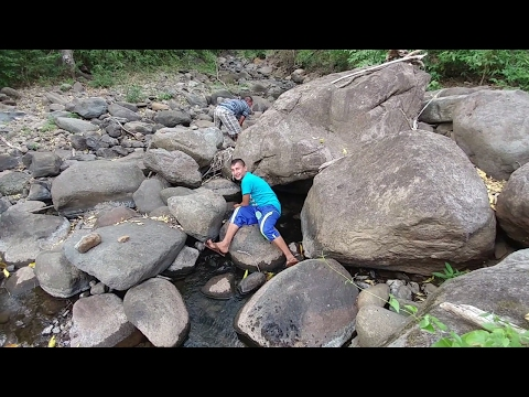 En busca de camarones y cangrejos de rio por si aun quedan. Mision Rescate del rio. Parte 4