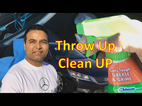 How to Clean Vomit from Your Car for Cheap