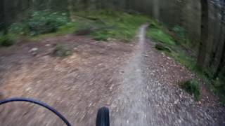 Coed Y Brenin MBR - Pink Heifer Section - 22-01-2016 | Rob Mogs