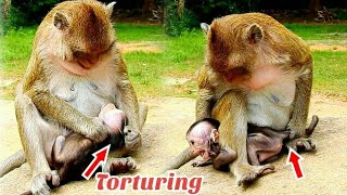 Deep Hurt!!! Kiadpper monkey torturing too hard, baby monkey strong voice