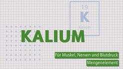 Kalium – Mineralstoff für Muskeln, Nerven und Blutdruck   Wofür, wieviel und woher?